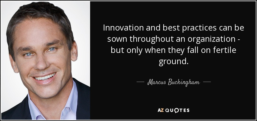 Innovation and best practices can be sown throughout an organization - but only when they fall on fertile ground. - Marcus Buckingham
