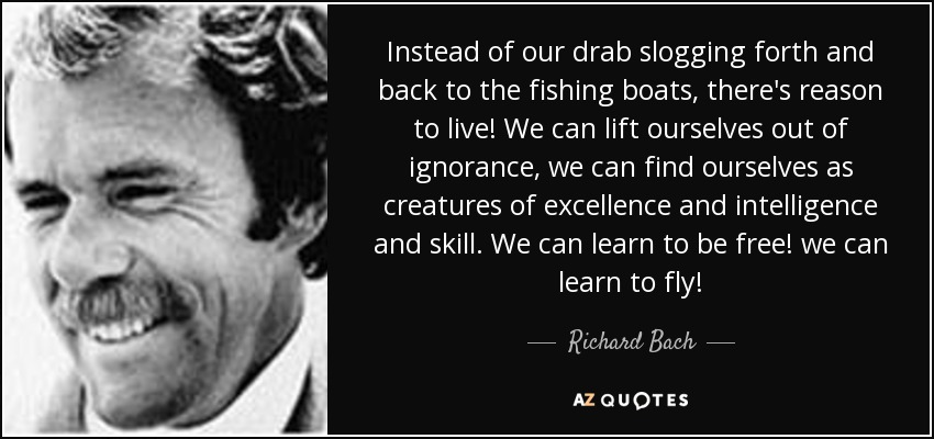 Instead of our drab slogging forth and back to the fishing boats, there's reason to live! We can lift ourselves out of ignorance, we can find ourselves as creatures of excellence and intelligence and skill. We can learn to be free! we can learn to fly! - Richard Bach