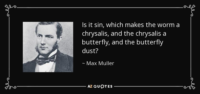 Is it sin, which makes the worm a chrysalis, and the chrysalis a butterfly, and the butterfly dust? - Max Muller