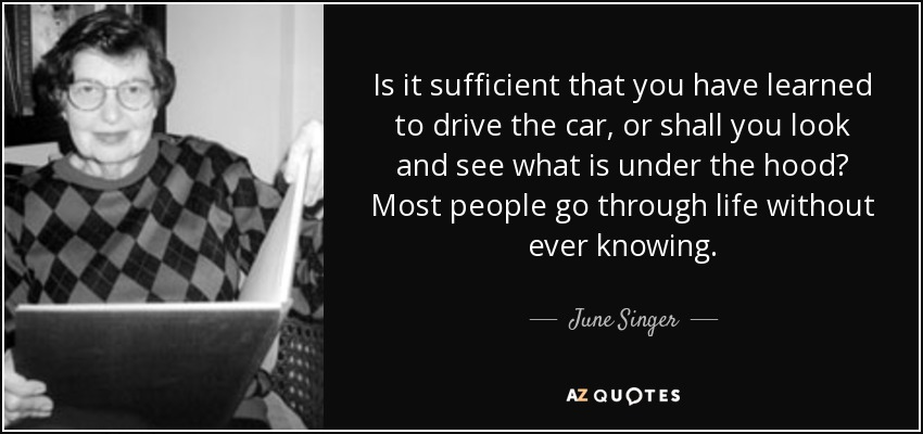 Is it sufficient that you have learned to drive the car, or shall you look and see what is under the hood? Most people go through life without ever knowing. - June Singer