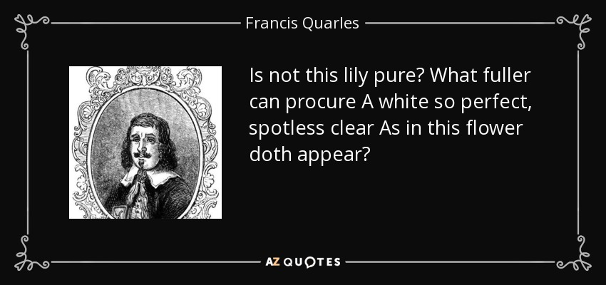 Is not this lily pure? What fuller can procure A white so perfect, spotless clear As in this flower doth appear? - Francis Quarles
