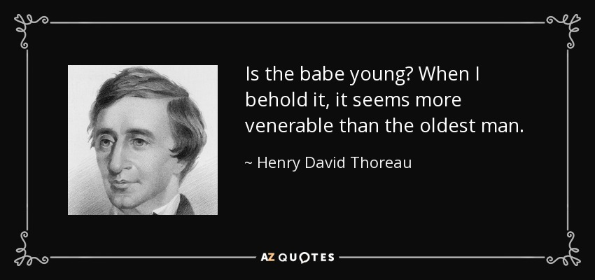Is the babe young? When I behold it, it seems more venerable than the oldest man. - Henry David Thoreau