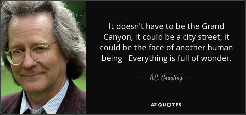 It doesn't have to be the Grand Canyon, it could be a city street, it could be the face of another human being - Everything is full of wonder. - A.C. Grayling