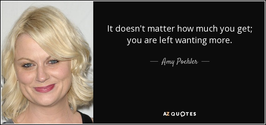 It doesn't matter how much you get; you are left wanting more. - Amy Poehler