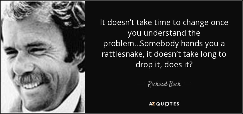 It doesn't take time to change once you understand the problem...Somebody hands you a rattlesnake, it doesn't take long to drop it, does it? - Richard Bach