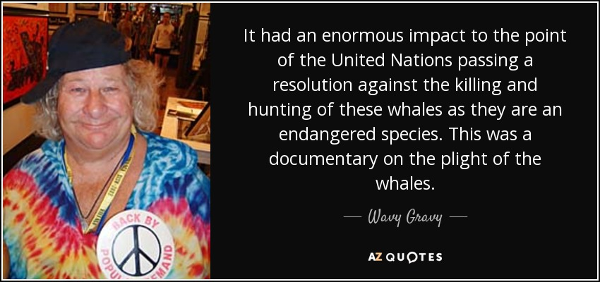 It had an enormous impact to the point of the United Nations passing a resolution against the killing and hunting of these whales as they are an endangered species. This was a documentary on the plight of the whales. - Wavy Gravy