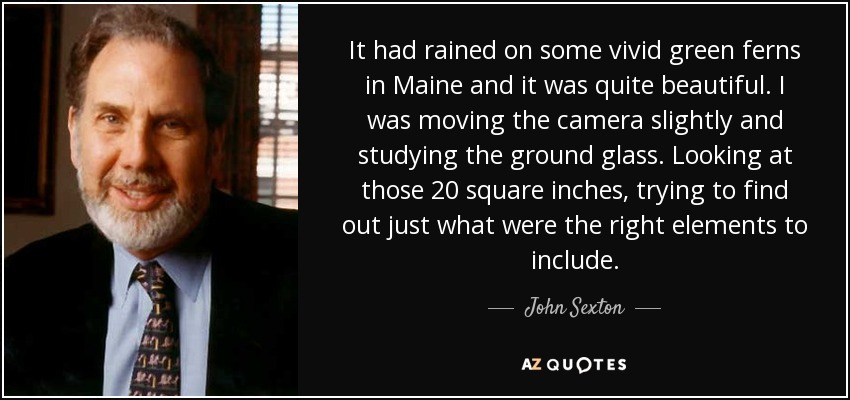 It had rained on some vivid green ferns in Maine and it was quite beautiful. I was moving the camera slightly and studying the ground glass. Looking at those 20 square inches, trying to find out just what were the right elements to include. - John Sexton