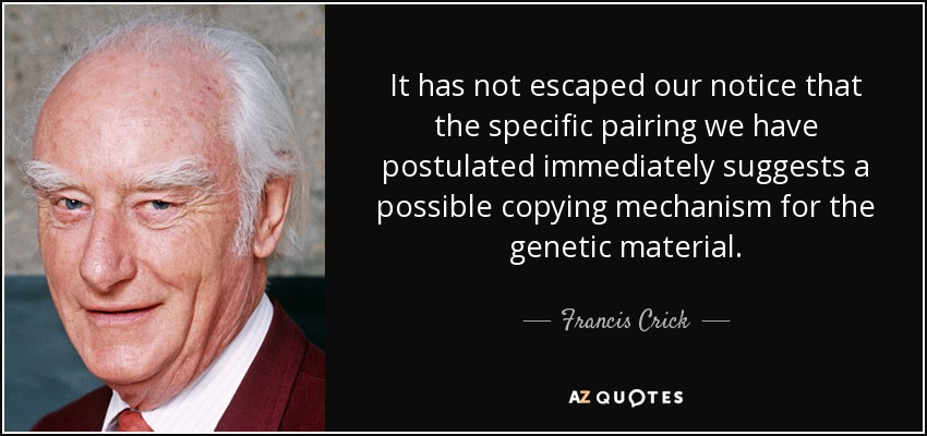 It has not escaped our notice that the specific pairing we have postulated immediately suggests a possible copying mechanism for the genetic material. - Francis Crick