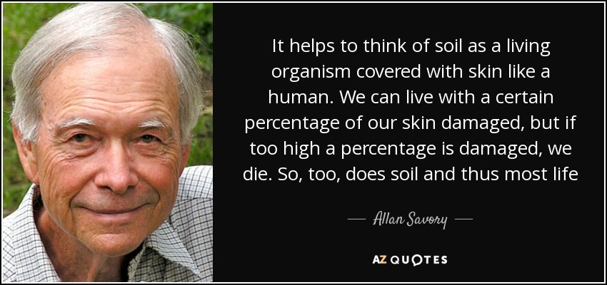 It helps to think of soil as a living organism covered with skin like a human. We can live with a certain percentage of our skin damaged, but if too high a percentage is damaged, we die. So, too, does soil and thus most life - Allan Savory