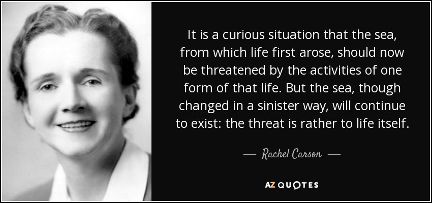 It is a curious situation that the sea, from which life first arose, should now be threatened by the activities of one form of that life. But the sea, though changed in a sinister way, will continue to exist: the threat is rather to life itself. - Rachel Carson