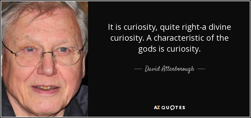 It is curiosity, quite right-a divine curiosity. A characteristic of the gods is curiosity. - David Attenborough