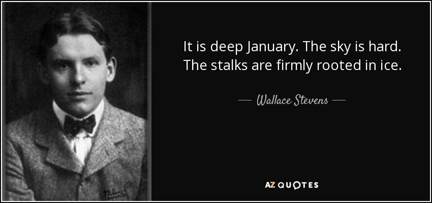 It is deep January. The sky is hard. The stalks are firmly rooted in ice. - Wallace Stevens