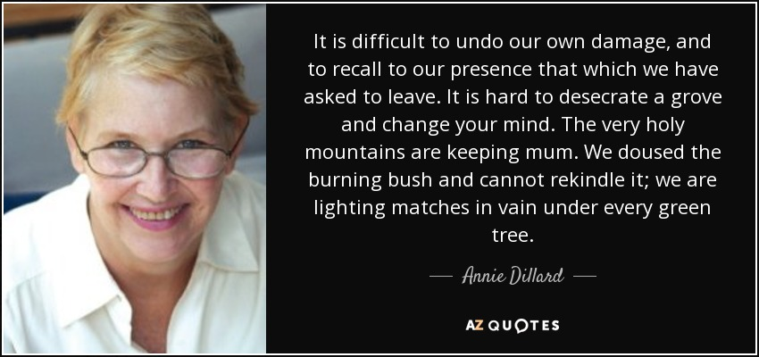 It is difficult to undo our own damage, and to recall to our presence that which we have asked to leave. It is hard to desecrate a grove and change your mind. The very holy mountains are keeping mum. We doused the burning bush and cannot rekindle it; we are lighting matches in vain under every green tree. - Annie Dillard