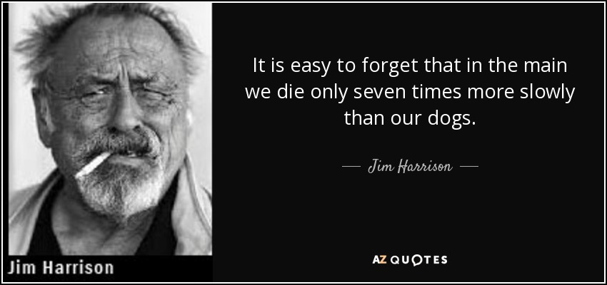 It is easy to forget that in the main we die only seven times more slowly than our dogs. - Jim Harrison