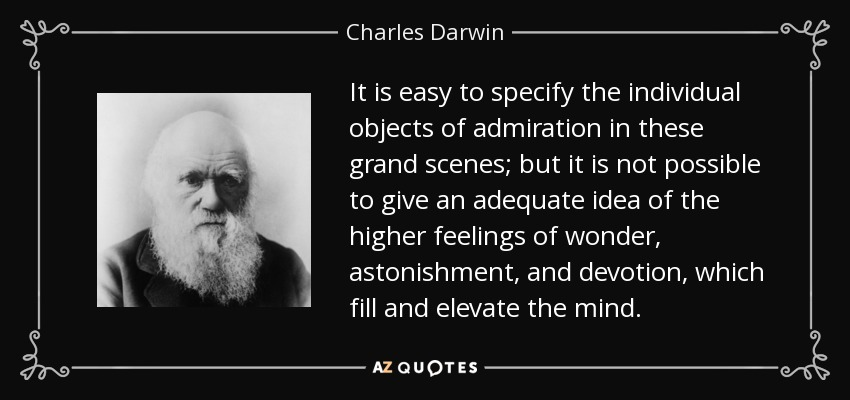 It is easy to specify the individual objects of admiration in these grand scenes; but it is not possible to give an adequate idea of the higher feelings of wonder, astonishment, and devotion, which fill and elevate the mind. - Charles Darwin