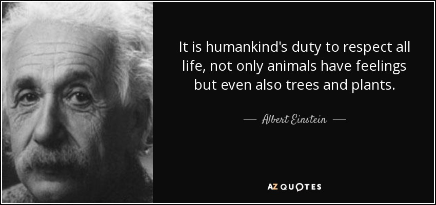 It is humankind's duty to respect all life, not only animals have feelings but even also trees and plants. - Albert Einstein