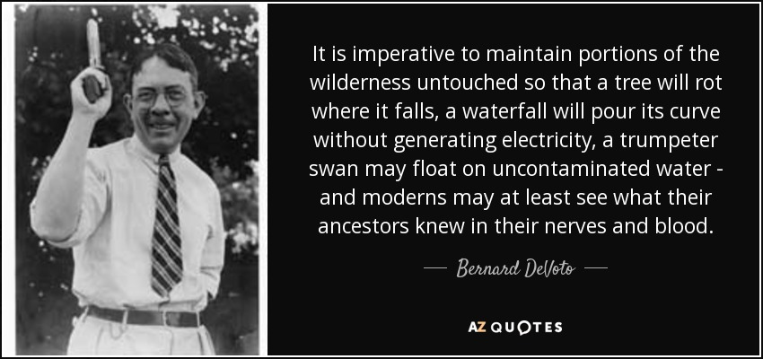 It is imperative to maintain portions of the wilderness untouched so that a tree will rot where it falls, a waterfall will pour its curve without generating electricity, a trumpeter swan may float on uncontaminated water - and moderns may at least see what their ancestors knew in their nerves and blood. - Bernard DeVoto