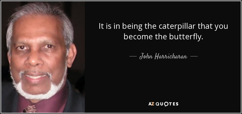It is in being the caterpillar that you become the butterfly. - John Harricharan