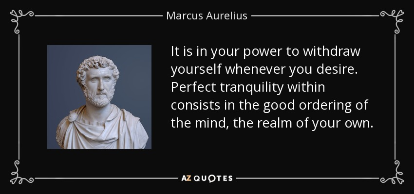 It is in your power to withdraw yourself whenever you desire. Perfect tranquility within consists in the good ordering of the mind, the realm of your own. - Marcus Aurelius