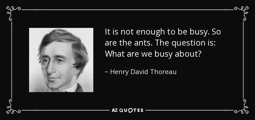 It is not enough to be busy. So are the ants. The question is: What are we busy about? - Henry David Thoreau