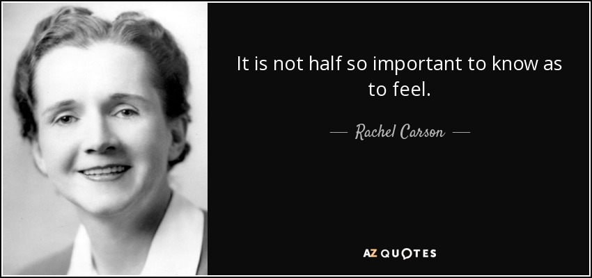 It is not half so important to know as to feel. - Rachel Carson