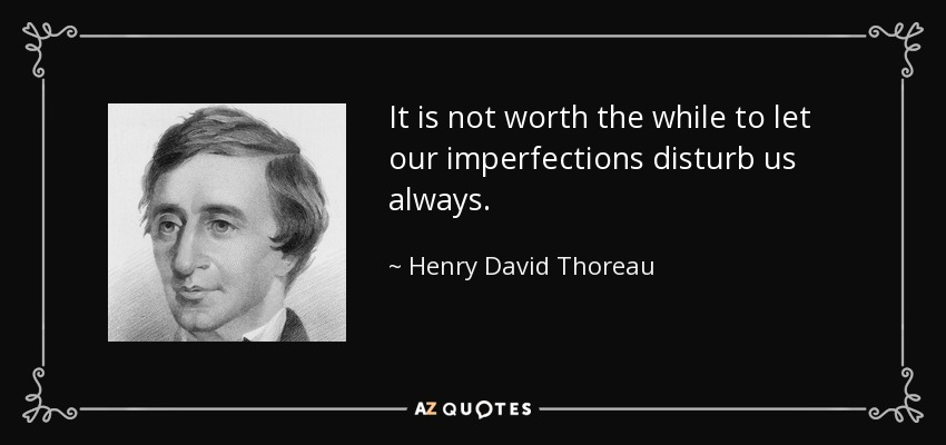 It is not worth the while to let our imperfections disturb us always. - Henry David Thoreau
