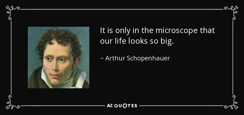 It is only in the microscope that our life looks so big. - Arthur Schopenhauer