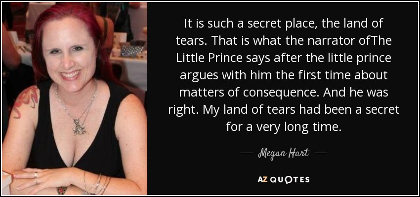 It is such a secret place, the land of tears. That is what the narrator ofThe Little Prince says after the little prince argues with him the first time about matters of consequence. And he was right. My land of tears had been a secret for a very long time. - Megan Hart