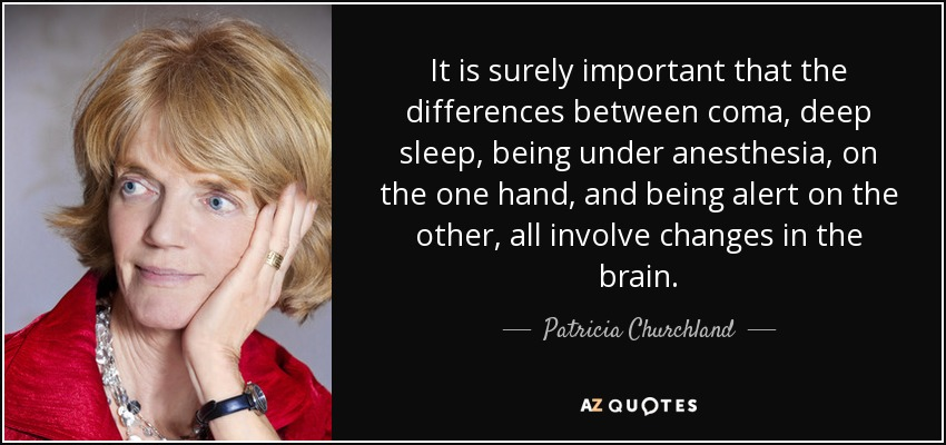 It is surely important that the differences between coma, deep sleep, being under anesthesia, on the one hand, and being alert on the other, all involve changes in the brain. - Patricia Churchland