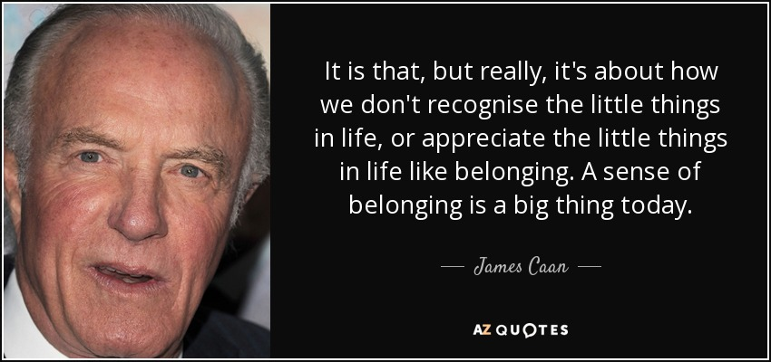 It is that, but really, it's about how we don't recognise the little things in life, or appreciate the little things in life like belonging. A sense of belonging is a big thing today. - James Caan