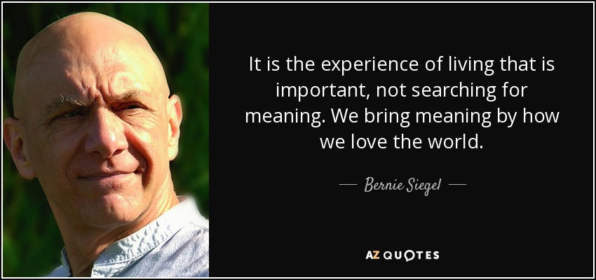 It is the experience of living that is important, not searching for meaning. We bring meaning by how we love the world. - Bernie Siegel
