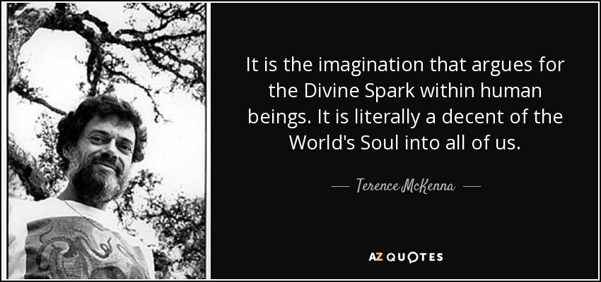 It is the imagination that argues for the Divine Spark within human beings. It is literally a decent of the World's Soul into all of us. - Terence McKenna