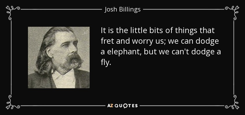 It is the little bits of things that fret and worry us; we can dodge a elephant, but we can't dodge a fly. - Josh Billings