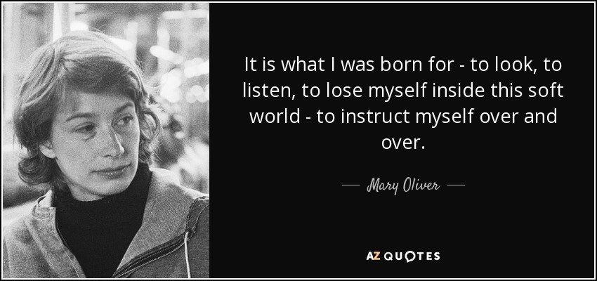 It is what I was born for - to look, to listen, to lose myself inside this soft world - to instruct myself over and over. - Mary Oliver