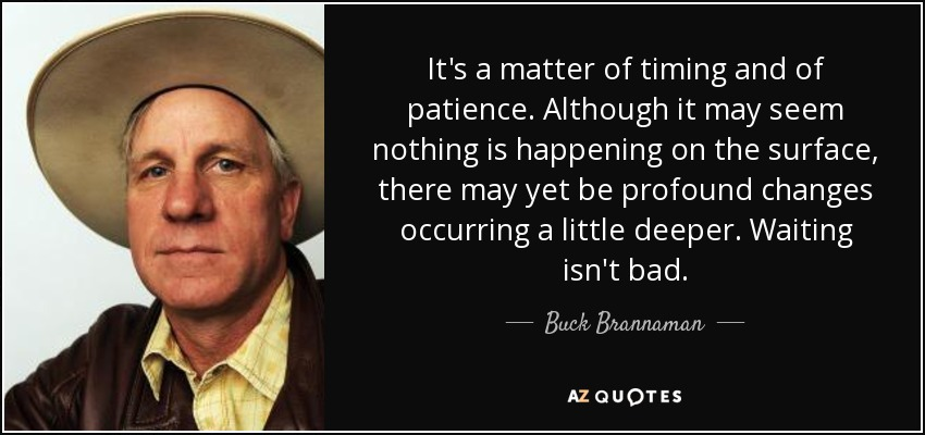 It's a matter of timing and of patience. Although it may seem nothing is happening on the surface, there may yet be profound changes occurring a little deeper. Waiting isn't bad. - Buck Brannaman