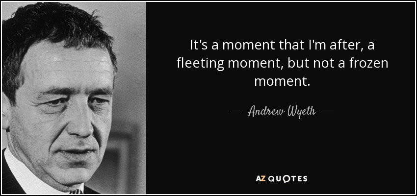 It's a moment that I'm after, a fleeting moment, but not a frozen moment. - Andrew Wyeth