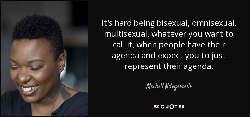 It's hard being bisexual, omnisexual, multisexual, whatever you want to call it, when people have their agenda and expect you to just represent their agenda. - Meshell Ndegeocello