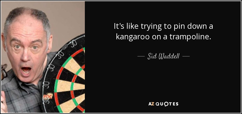 It's like trying to pin down a kangaroo on a trampoline. - Sid Waddell