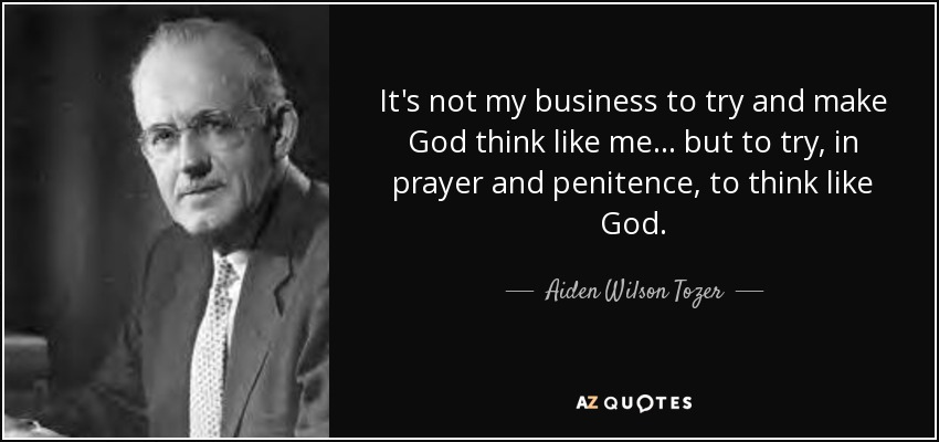 Aiden Wilson Tozer Quote: It's Not My Business To Try And