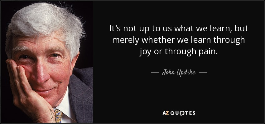 It's not up to us what we learn, but merely whether we learn through joy or through pain. - John Updike