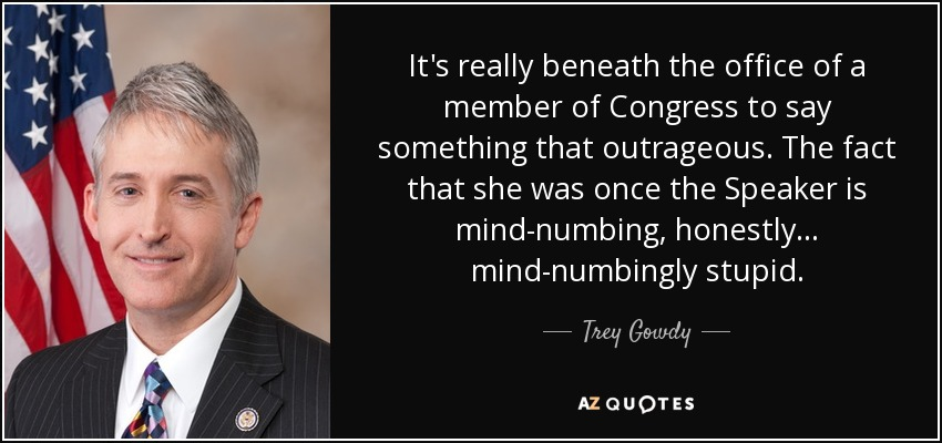 It's really beneath the office of a member of Congress to say something that outrageous. The fact that she was once the Speaker is mind-numbing, honestly... mind-numbingly stupid. - Trey Gowdy