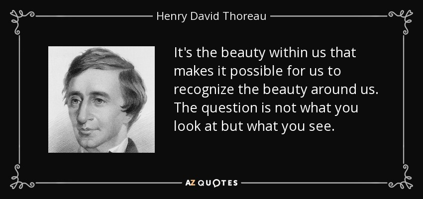 It's the beauty within us that makes it possible for us to recognize the beauty around us. The question is not what you look at but what you see. - Henry David Thoreau