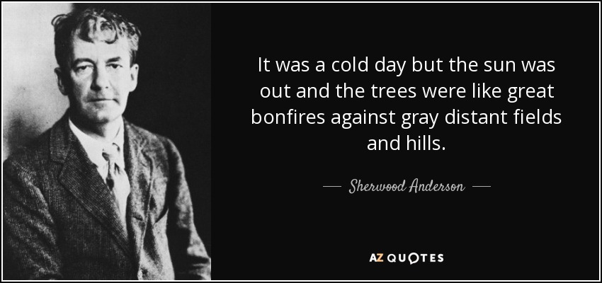 It was a cold day but the sun was out and the trees were like great bonfires against gray distant fields and hills. - Sherwood Anderson