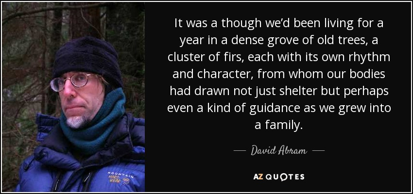 It was a though we'd been living for a year in a dense grove of old trees, a cluster of firs, each with its own rhythm and character, from whom our bodies had drawn not just shelter but perhaps even a kind of guidance as we grew into a family. - David Abram