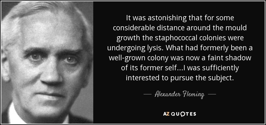 It was astonishing that for some considerable distance around the mould growth the staphococcal colonies were undergoing lysis. What had formerly been a well-grown colony was now a faint shadow of its former self...I was sufficiently interested to pursue the subject. - Alexander Fleming