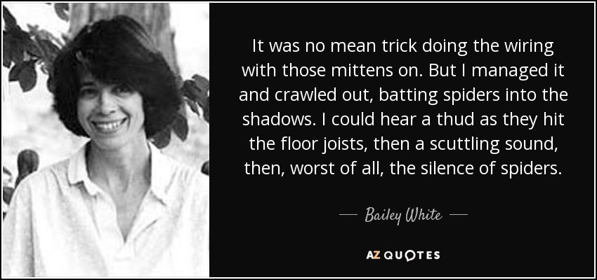 It was no mean trick doing the wiring with those mittens on. But I managed it and crawled out, batting spiders into the shadows. I could hear a thud as they hit the floor joists, then a scuttling sound, then, worst of all, the silence of spiders. - Bailey White