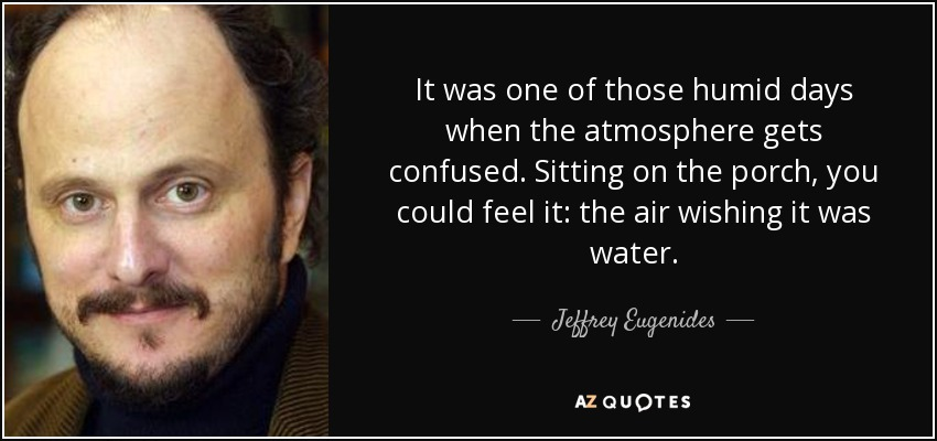 It was one of those humid days when the atmosphere gets confused. Sitting on the porch, you could feel it: the air wishing it was water. - Jeffrey Eugenides