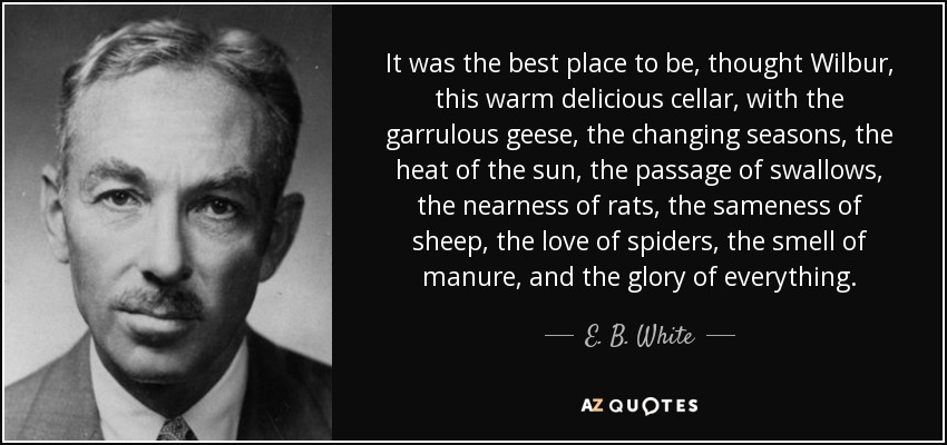 It was the best place to be, thought Wilbur, this warm delicious cellar, with the garrulous geese, the changing seasons, the heat of the sun, the passage of swallows, the nearness of rats, the sameness of sheep, the love of spiders, the smell of manure, and the glory of everything. - E. B. White