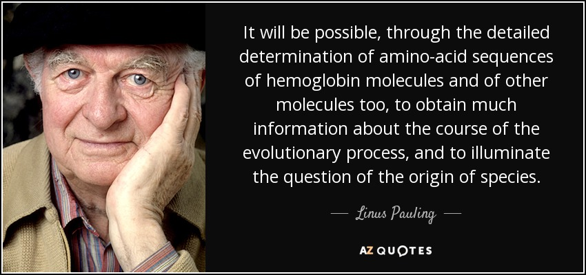 It will be possible, through the detailed determination of amino-acid sequences of hemoglobin molecules and of other molecules too, to obtain much information about the course of the evolutionary process, and to illuminate the question of the origin of species. - Linus Pauling