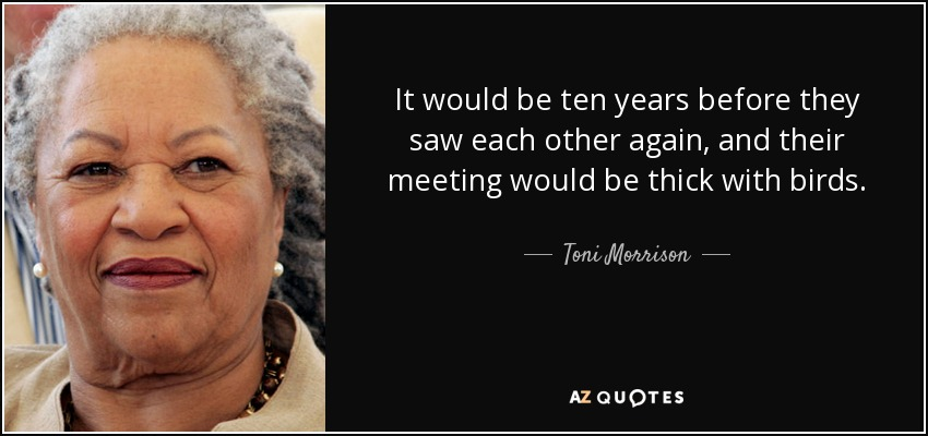 It would be ten years before they saw each other again, and their meeting would be thick with birds. - Toni Morrison